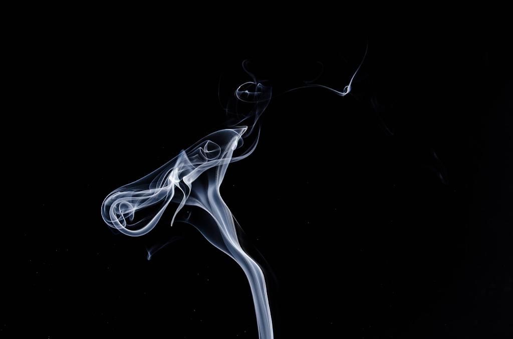 Alimentándose de humo